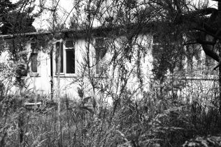 Prefab back garden in Peckham, 2002 | Elisabeth Blanchet