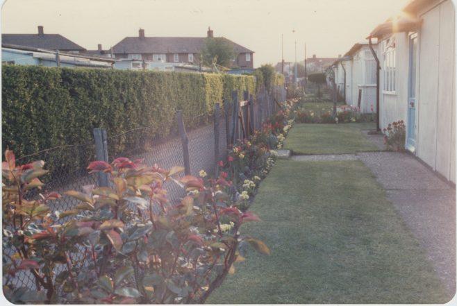 LW Rich's prefab garden on the Excalibur Estate | Hearn,Jane