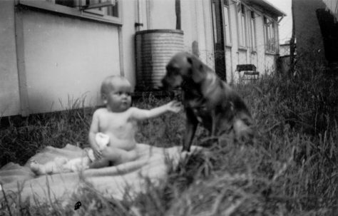 Baby and dog in front of Uni-Seco prefab, Silver End