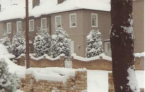 Orlit houses at 11 Billson Street, London E14